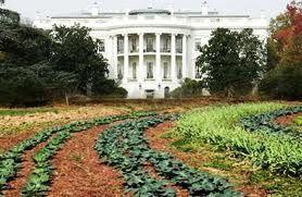 Eleanor Roosevelt's WWII Victory Garden