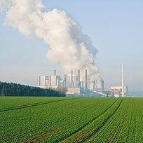 La contaminación del aire genera partículas de ozono y lluvia ácida, que afectan negativamente a los cultivos agrícolas y a los vegetales.