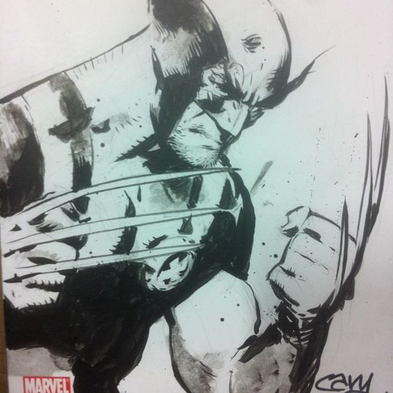 Wolverine by Cary Nord