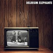 DELIRIUM ELEPHANTS