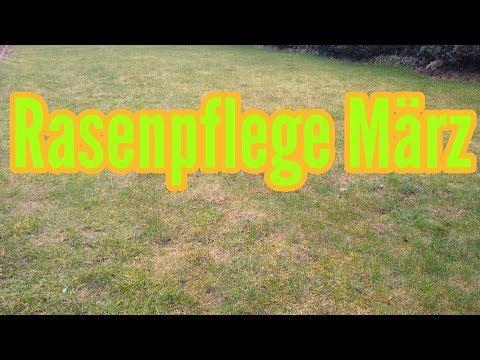 Rasenpflege Im Marz Rasen Im Marz Das Ist Zu Tun Rasenpflege Im Fruhjahr Youtube Rasenpflege Im Fruhjahr Rasenpflege Rasen