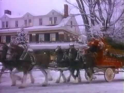 Classic Budweiser Clydesdales Christmas Commercial Youtube With