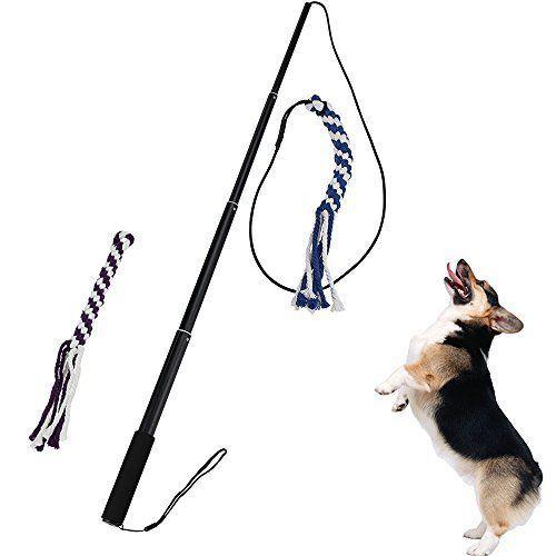 Interactive Dog Tug Toy Ang Extendable Dog Teaser Dog Leash