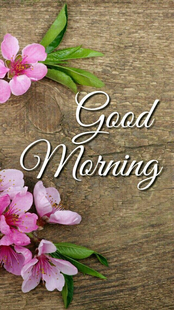 60 Most Beautiful Good Morning Images With Flowers Hindi Status