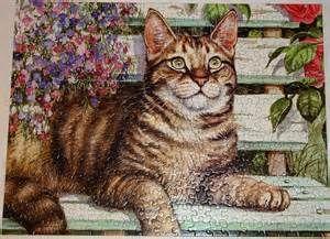 Fancy Feline by Debbie Cook