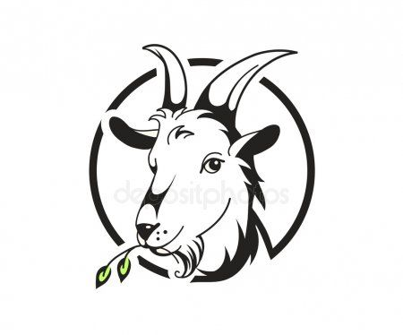 Head Of Goat On White Background Stock Vector Affiliate White Goat Head Vector Ad Goat Art Goat Picture Goat Logo