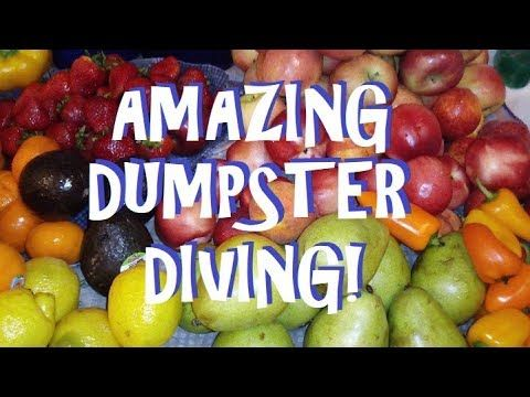 Fantastic Dumpster Dive Blind Bags And Tons Of Free Food Forever Freegan Youtube Dumpster Diving Free Food Dumpster