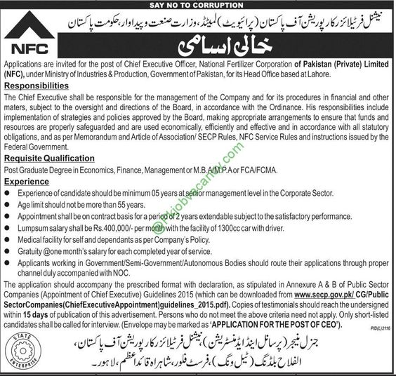 NFC Chief Executive Officer Jobs In National Fertilizer - chief executive officer job description