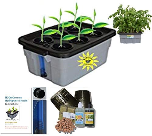 DWC Self-watering hydroponic BUBBLER system # 3 H2OtoGro 4 or 6 site