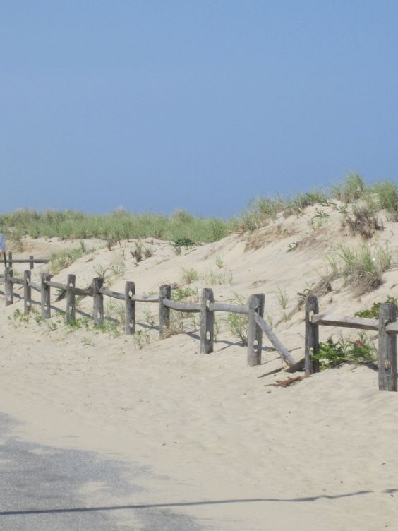 The Dunes at Manasquan Beach
