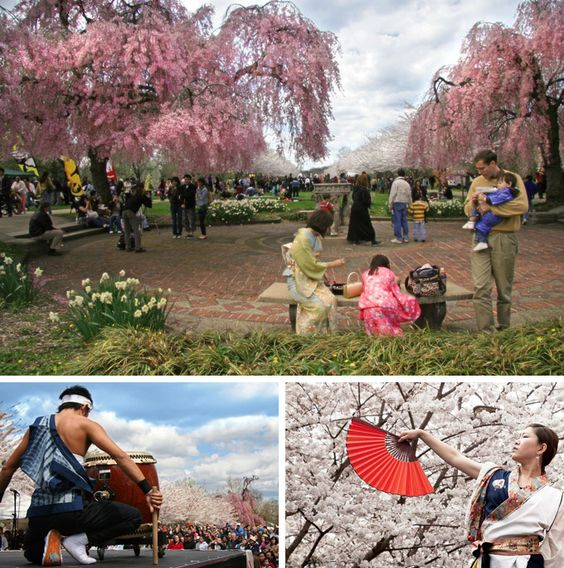 Our Guide To The 2014 Subaru Cherry Blossom Festival, Blooming Throughout Philadelphia April 2-13, 2014 (Photos courtesy Japan America Society of Greater Philadelphia)