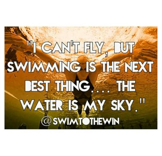 I can't fly, but swimming is the next best thing ... the water is my sky.