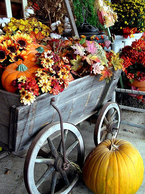 Fall Color | Wagon filled with flowers and pumpkins | WELS net | Flickr