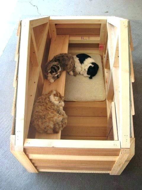 Outdoor Cat House Plans Outdoor Cat House Plans Cat House Ideas Best Outdoor Cat Houses Ideas On Outdoor Cat Free Outdoor C Katzen Haus Katzenhaus Wilde Katzen