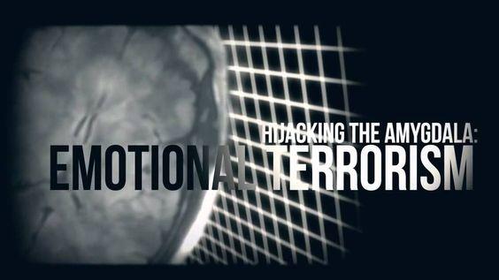 A Virus Called Fear ~ Documentary Short Movie