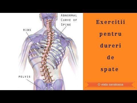 exerciții fizice pentru durere în articulațiile gâtului preparate pentru tratamentul ligamentelor și articulațiilor