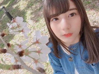 桜越しの小坂菜緒