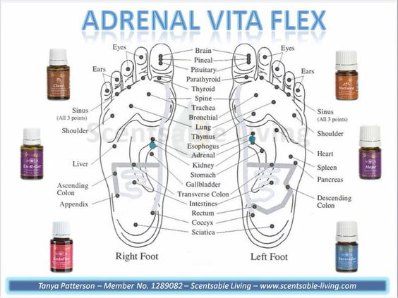 adrenal vita flex points young living essential oils my. Black Bedroom Furniture Sets. Home Design Ideas