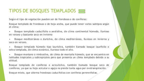 tipos de bosques templados