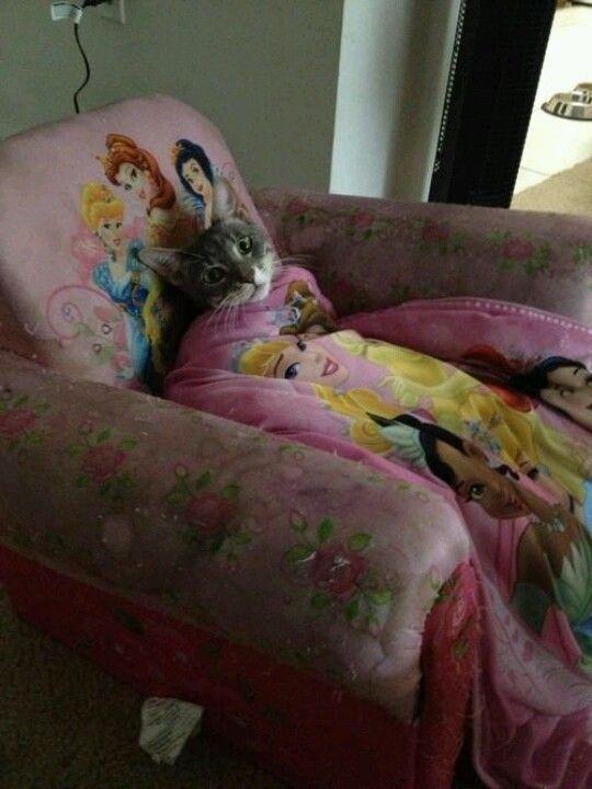 Prinsessenpoes