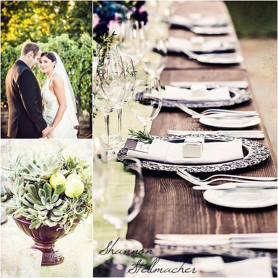 Sonoma Destination wedding 2- Shannon Stellmacher Photography ...total photo fabulousness!