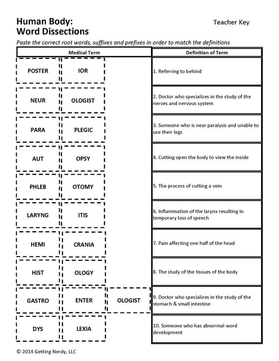 intro to medical terminology Medical terminology worksheets - showing all 8 printables worksheets are medical terminology work, title basic medical terminology, basic medical terminology, medical.