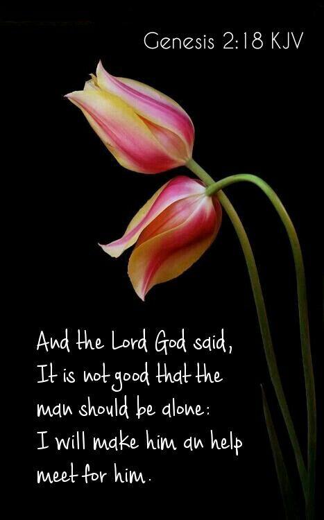 Genesis 2:18 KJV
