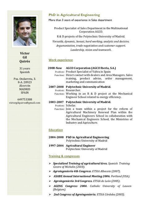 English Cv Cv English Example Chronological Resume English Cv Template