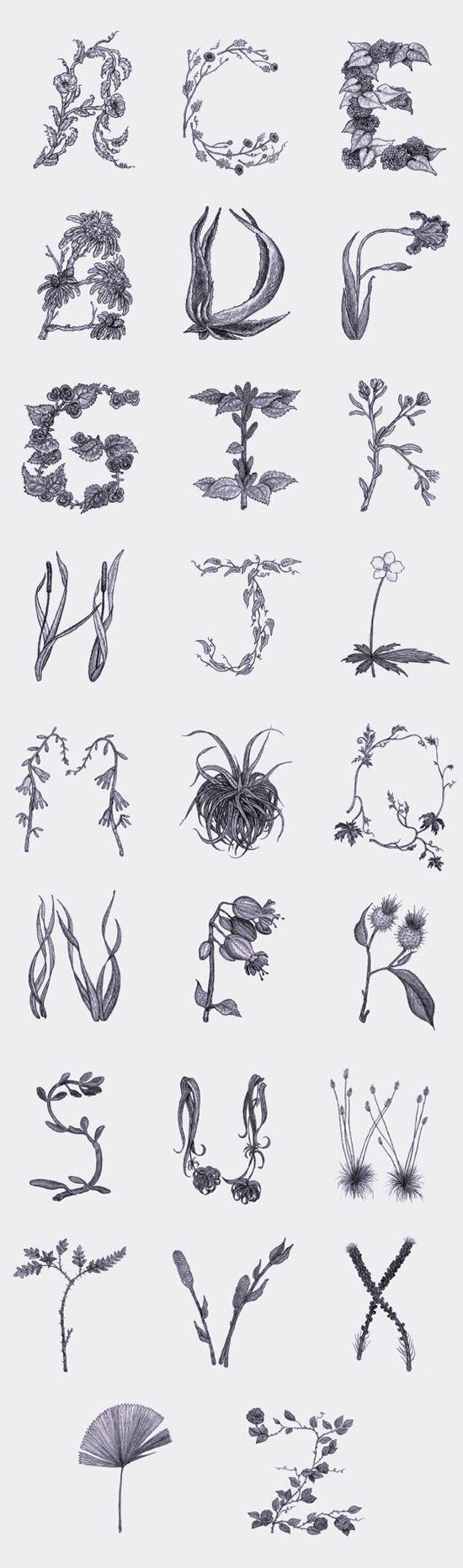 #botany #printshop