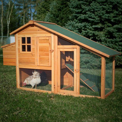 Boomer george deluxe 4 chicken coop with run horse for Fancy chicken coops for sale