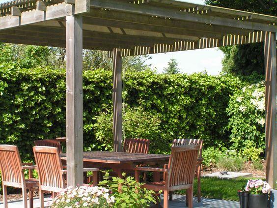 pergola met lamellen binnenkijken in tuinen pinterest pergolas and met. Black Bedroom Furniture Sets. Home Design Ideas