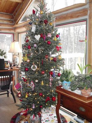Anchor Cottage Freshwater Decor: Search results for christmas tree