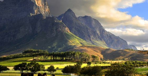 Franschhoek Valley, South Africa. Need to go here and trace my family. Hugeunots.: