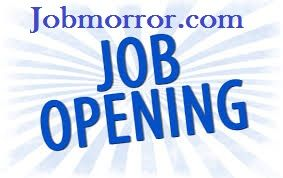 wellcome to jobmirror com top job sites in delhi search for jobs