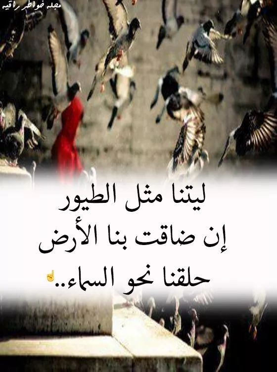 Pin By فلسطينية ولي الفخر On Arabic Words Arabic Quotes Arabic Words Qoutes