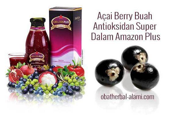 Manfaat Antioksidan Untuk Kesehatan