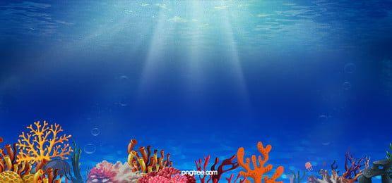 Star Fundo Fotos Vetores De Fundo De Star E Arquivos Psd Para Download Gratis Pngtree Blue Background Images Underwater World Flower Background Wallpaper