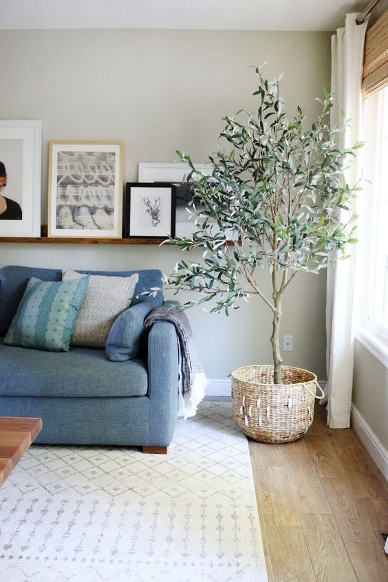 2019 Interior Design Trends Part One Faux Olive Tree Indoor Olive Tree Decor