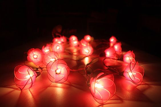 Red flower string lights for party and decoration 20 by ginew, $16.50