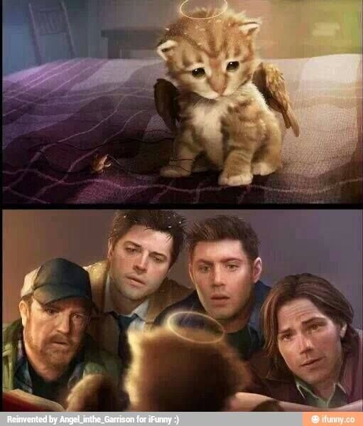 Bobby looks so confused. Aww sammys face! And cass and deans! ❤️ #Amazing