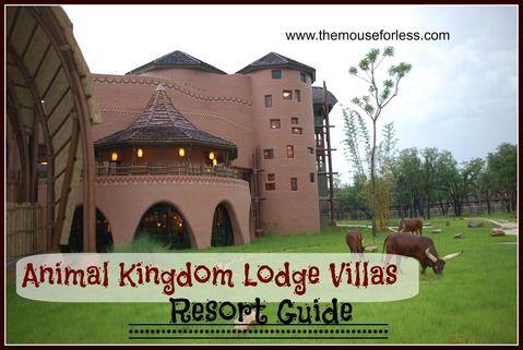 Animal Kingdom Villas And Lodges On Pinterest