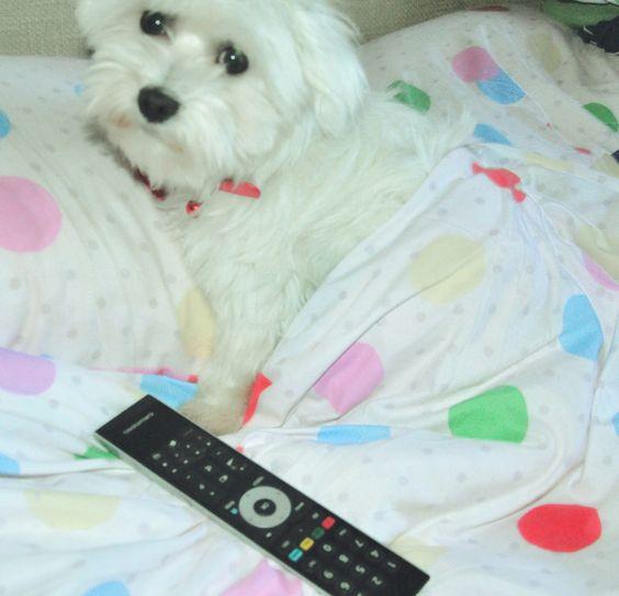 watching TV 😀