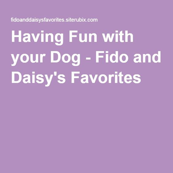 Having Fun with your Dog - Fido and Daisy's Favorites