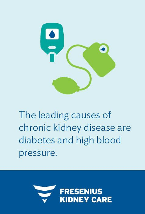 Pin On Ckd Facts