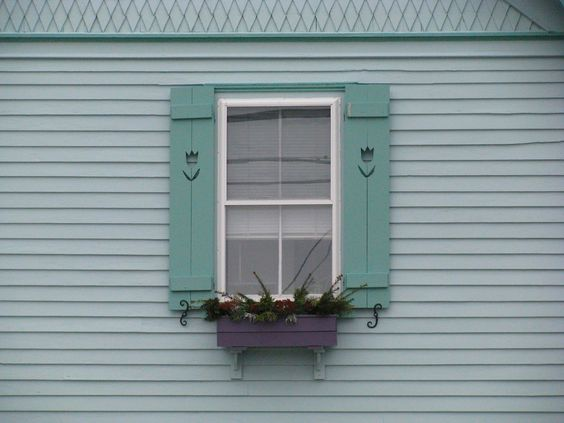 these cut-out tulip shutters and the color of the flower box.  the trim above.....i love all of it.