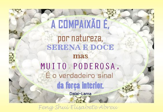 Comportamento positivo www.elisabeteabreu.com.br