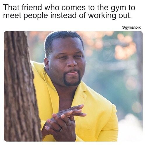 We Now Have Fresh New Programs And Video Downloaded Weights Workouts Home Exercise Easy At Really Funny Pictures Funny Pictures With Captions Really Funny