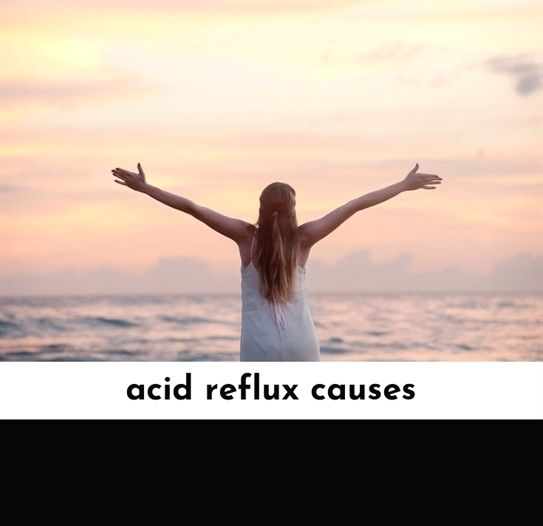 Pin On Acid Reflux Animation