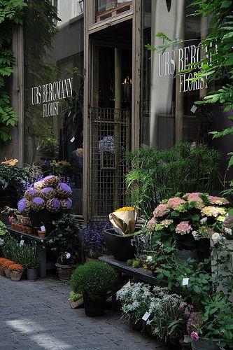 storefront of urs bergmann florist (elephanten-apotheke), zürich, switzerland   travel photography #shops