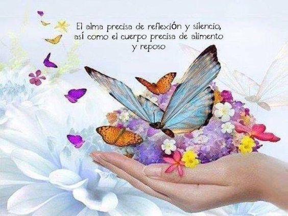 Como Mariposas 8ea1d661f1de72160473efb869334ff2